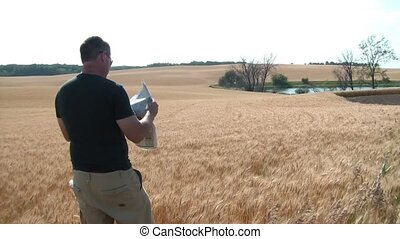 Guy Standing in Wheat Field Reading Newspaper - Man standing...