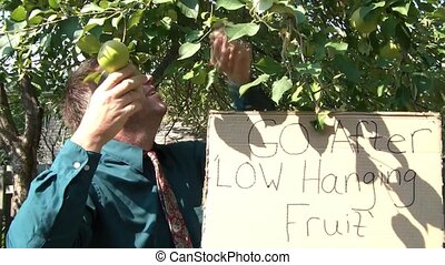 Low Hanging Fruit Businessman - Businessman picks an apple...