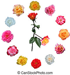 Clock face made of roses, with hands set at 4 o\\\' clock on...