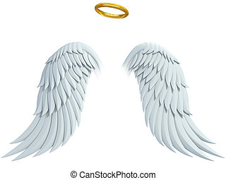 angel design elements - wings and golden halo isolated on...
