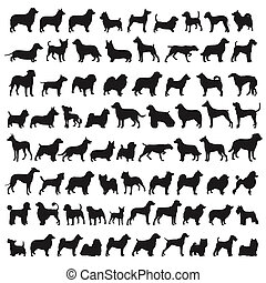 Popular dog breeds - 72 Dog Species in silhouttes