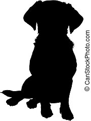 mixed breed puppy silhouette - A black silhouette image of a...