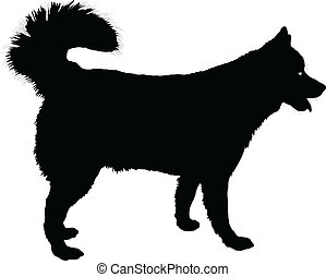 Husky - A profile of a  Husky dog in black silhouette.