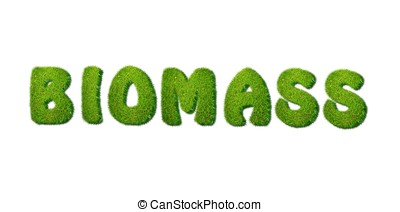 Biomass. - Illustration with biomass grass word on white...