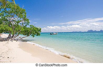 vacker, tropisk, strand