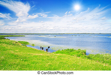 Lake, green grass and blue sky