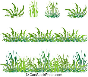 set of green grass