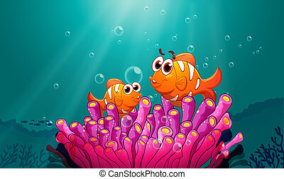 fishes in water