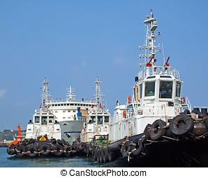 A Row of Tugboats in the Harbor