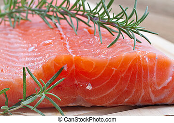 Fresh salmon fillet