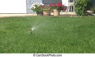 Rotating Sprinkler Watering Grass