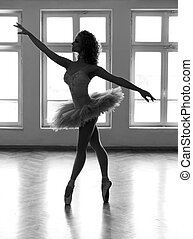 Shadow of Purity - Young ballerina with a beautiful tutu,...