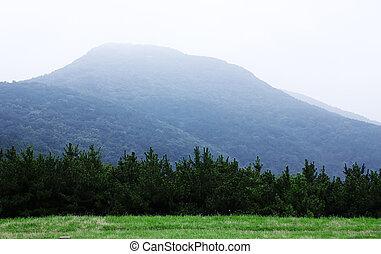 Berg - Busan
