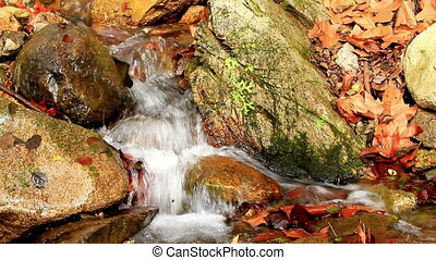 Waterfall - Beautiful veil cascading waterfall, mossy rocks