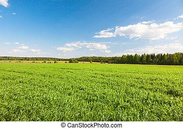 Green hill under blue cloudy sky