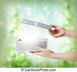 Silver Holiday Gift Box