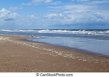beach on North sea in Netherlands - beach close to Zandvoort...