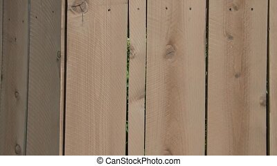 Stained Wood Fence Pan - Still to pan video of newly stained...
