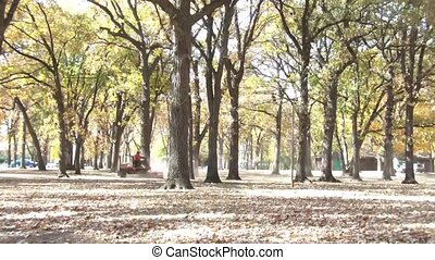 Time-lapse of Men Mowing Park in Fall - Time lapse of two...