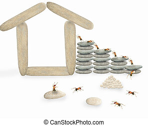 Ant scenes work - Ants build their own houses