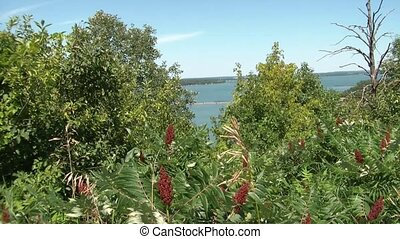 View from Mountain of Lakes - View of blue Minnesota lakes...