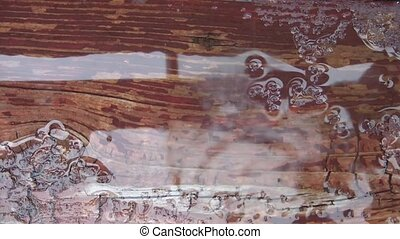Water Dripping onto Rustic Deck - Abstract of water dripping...