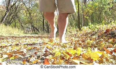Walking Barefoot through Fall Leaves - Man walks barefoot...