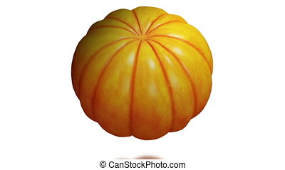 Pumpkin - seamless loop on white background