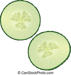 Fresh slices of cucumber on white background, vector...