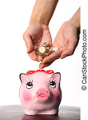 cash Coin box pink pig and hand
