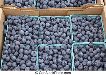 Blueberry Flats for Sale