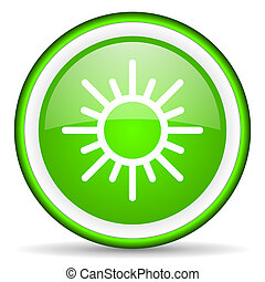 sun green glossy icon on white background