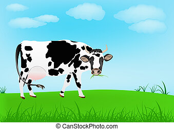 Dairy cow over spring green meadow.Agriculture