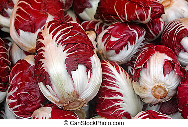 Red radicchio of treviso for sale by grocery store