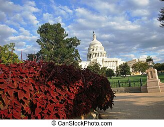 Capitol, Washington DC
