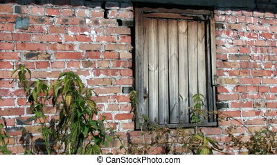 Boarded-up window in brick wall