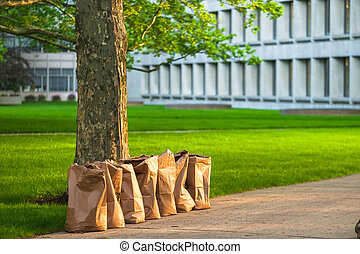 Recycling yard waste paper bags