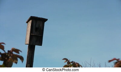 Birdhouse against the blue sky