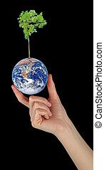 Planet earth as symbol of nature conservation.Elements of...
