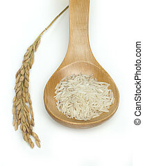 Basmati rice in wooden spoon on white background.Rice branch