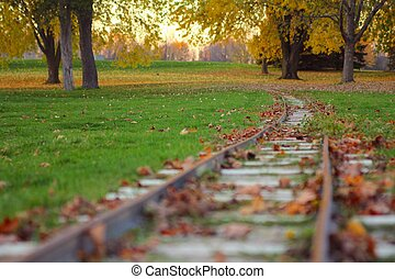 Miniature train track - Miniature train track, covered by...