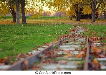 Miniature train track