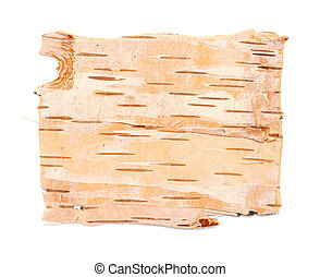 birch bark texture - Natural background: birch bark,...