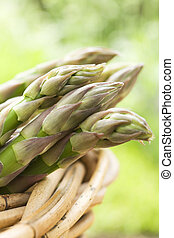 Bunch of asparagus in basket - Close up of asparagus tips in...