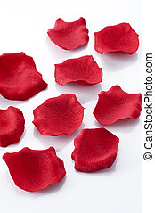 rose petals - Many rose petals on white background
