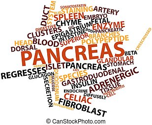 Word cloud for Pancreas - Abstract word cloud for Pancreas...