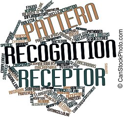 Pattern recognition receptor