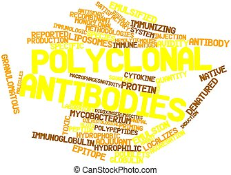 Polyclonal antibodies - Abstract word cloud for Polyclonal...