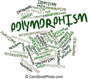 Polymorphism - Abstract word cloud for Polymorphism with...