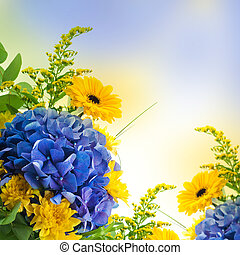 Bouquet from blue hydrangeas and yellow asters, a flower...